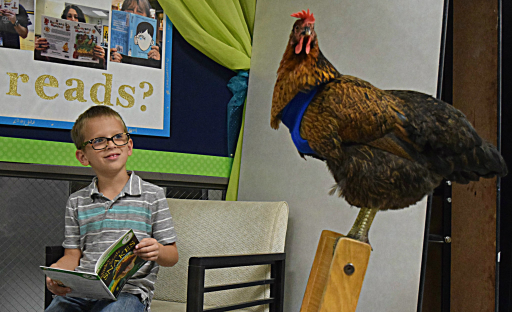 Lakeville second-grader Jake McCaffery shares a story with the famous Reading Chicken, whose name is Trish. Photo by Elise Shire.