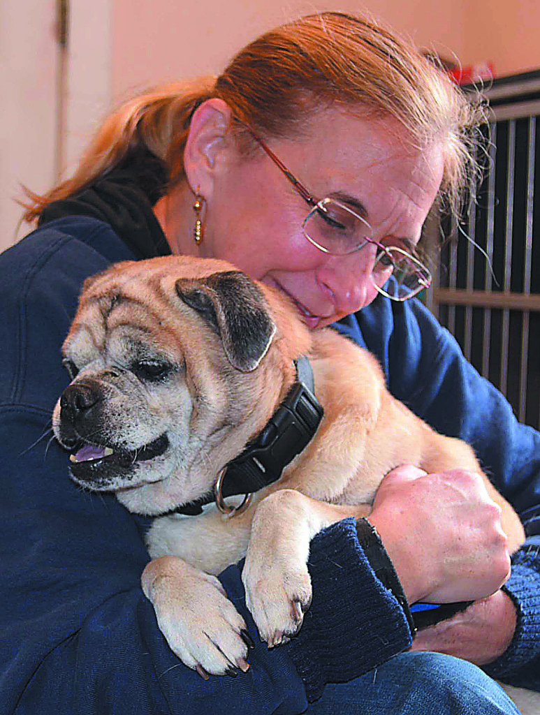 Maria Wolbert, vice president of the K9 Stray Rescue League, snuggles Otis, an 11-year-old pug mix who's available for adoption. Senior dogs are $100 to adopt now through the end of December.  Photo by C.J. Carnacchio.