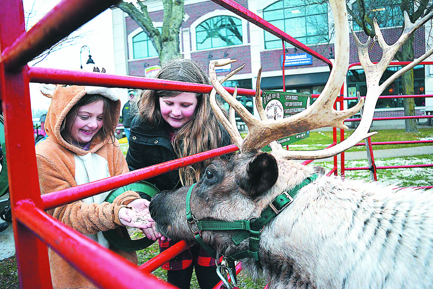Lapeer sisters Fern (left) and Josey Hosch had fun feeding a reindeer in downtown Oxford's Centennial Park following Saturday's Christmas parade. Photo by C.J. Carnacchio.