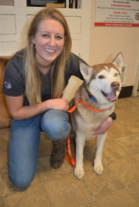 Justine Hubbard, interim president of the Oxford-based K9 Stray Rescue League, poses with Sky, a friendly husky who's looking for a home. Photo by C.J. Carnacchio.