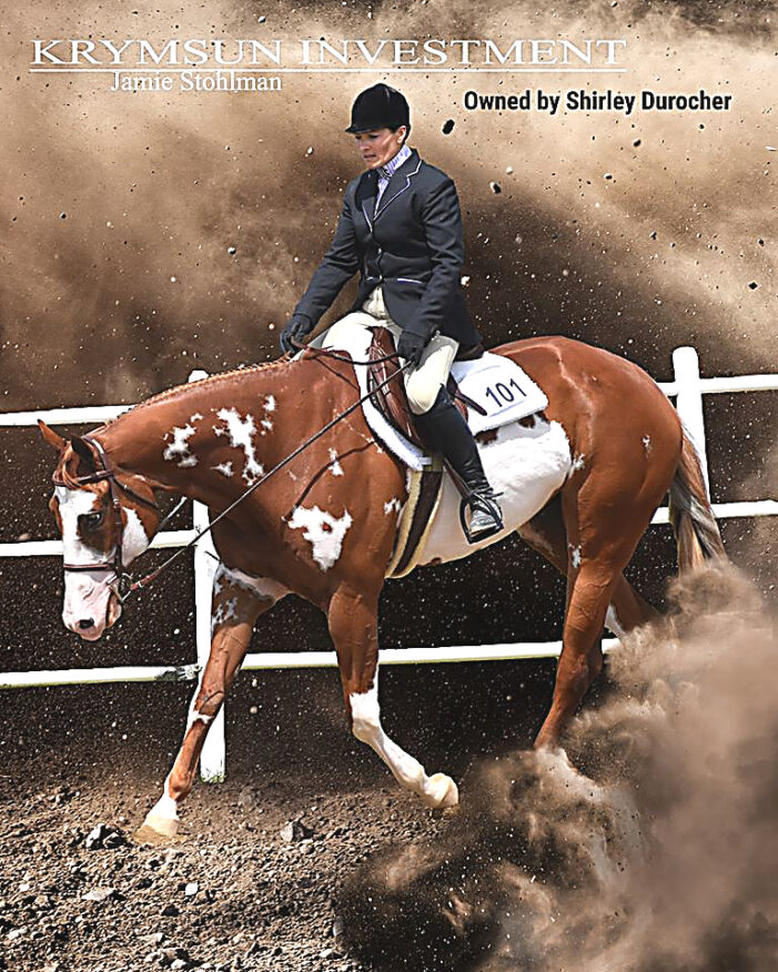 Top honors from Pinto Horse Association