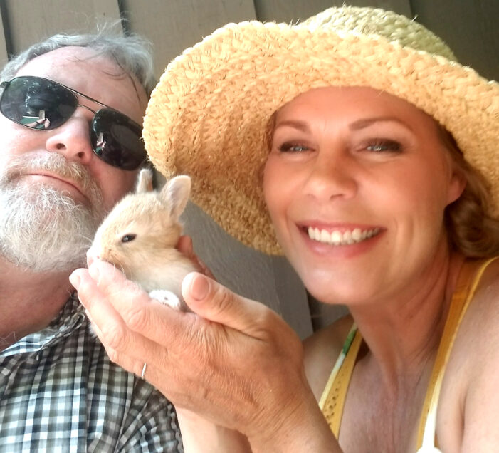 Bunnies, chickens and pigs . . . oh my