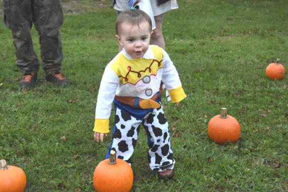 A punkin for the pumpkins